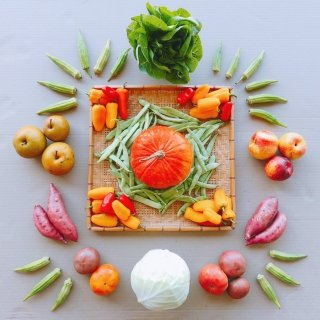 A CSA share from Mountain Food Products